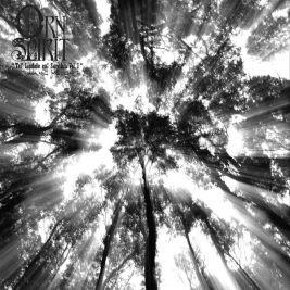 111 - Orn Spirit - Tel' Lindale em' Sarithin Vol1