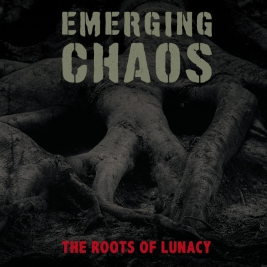 204 - Emerging Chaos - The Roots Of Lunacy